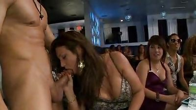 The nightclub was packaged into by 70 horny nymphs